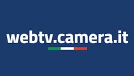 WEb TV Camera